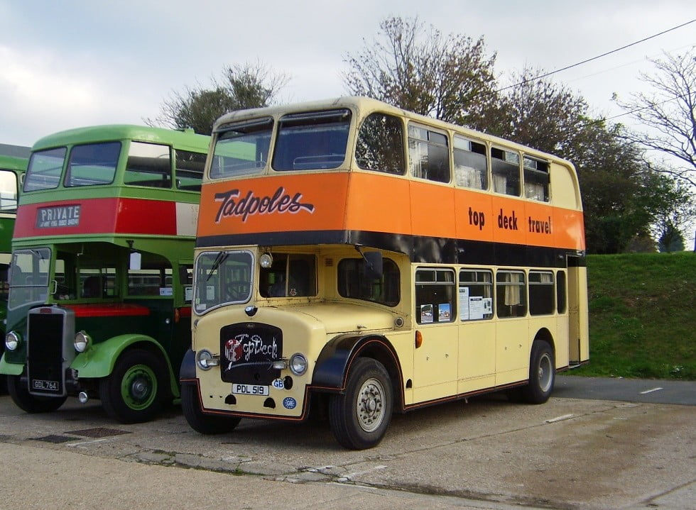 Bristol LD6G – 559 (PDL 519) Tadpoles